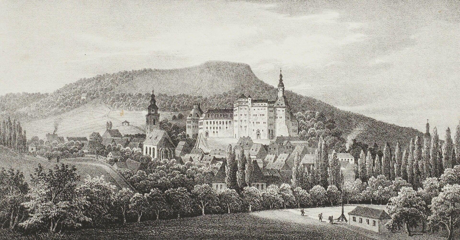 Stadt und Schloss Sondershausen gegen Morgen