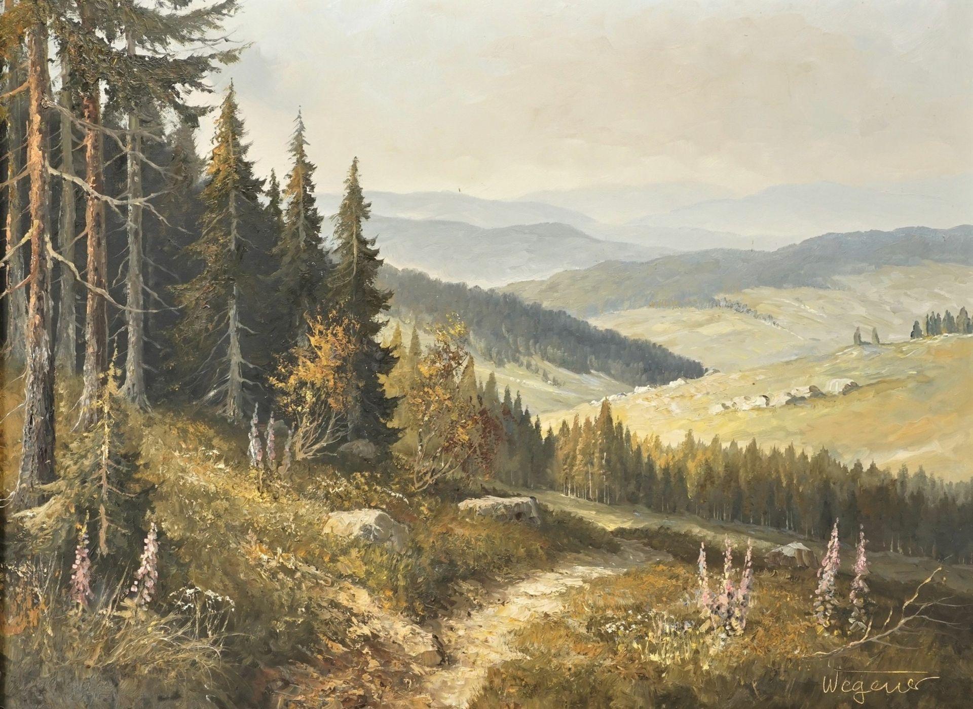 Georg Wegener, Weite Harzlandschaft