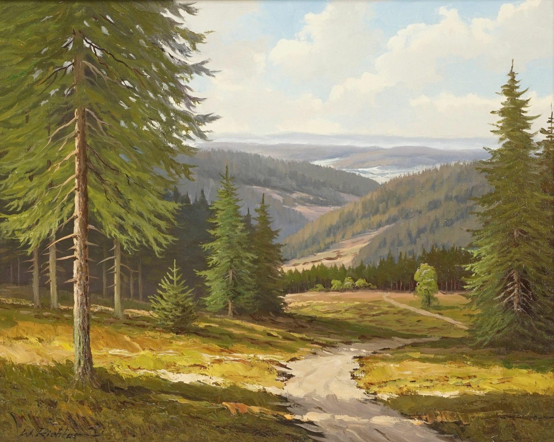 """Walter Richter, """"Weite Harzlandschaft"""""""