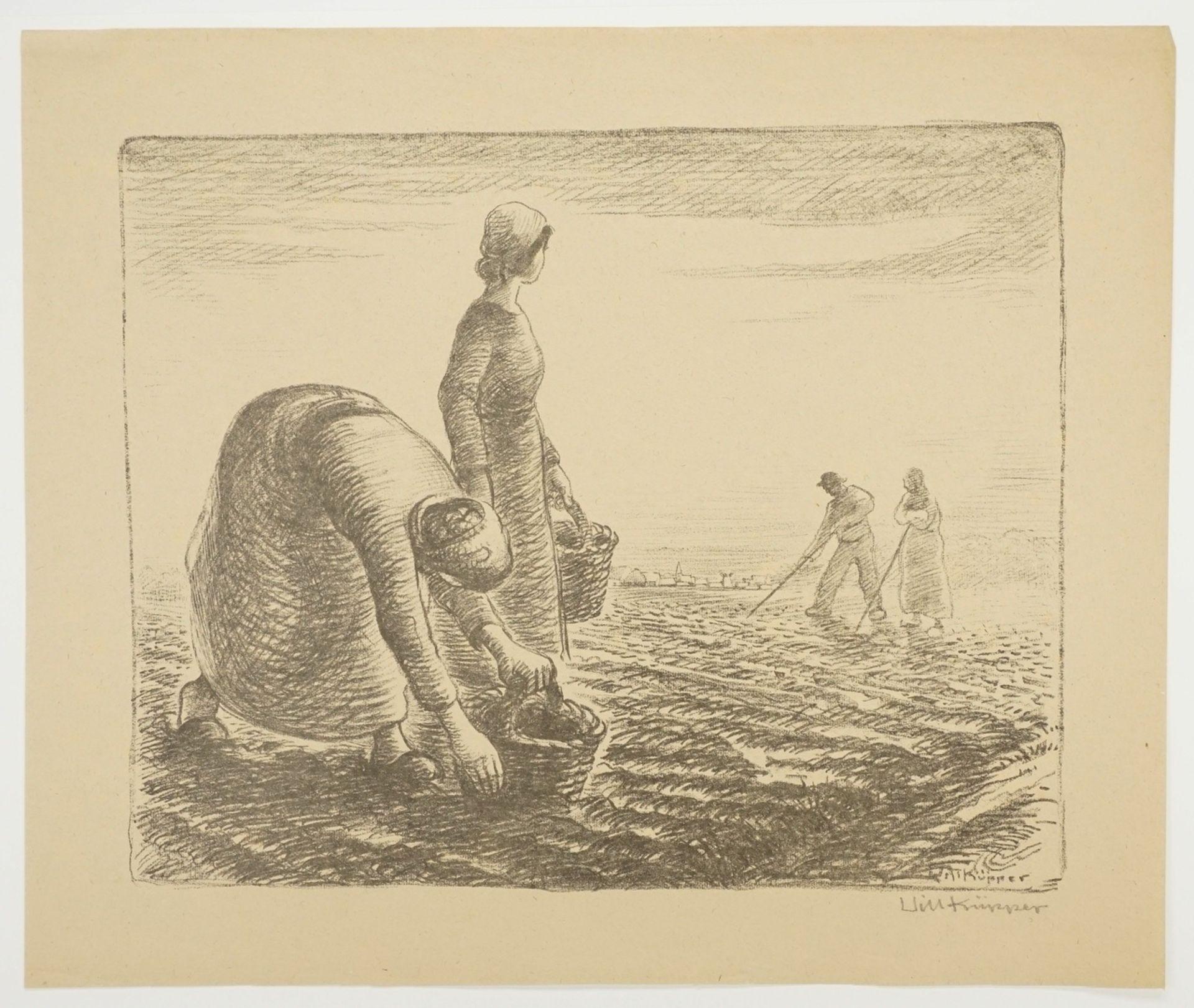 Will Küpper, Kartoffellese - Bild 3 aus 4