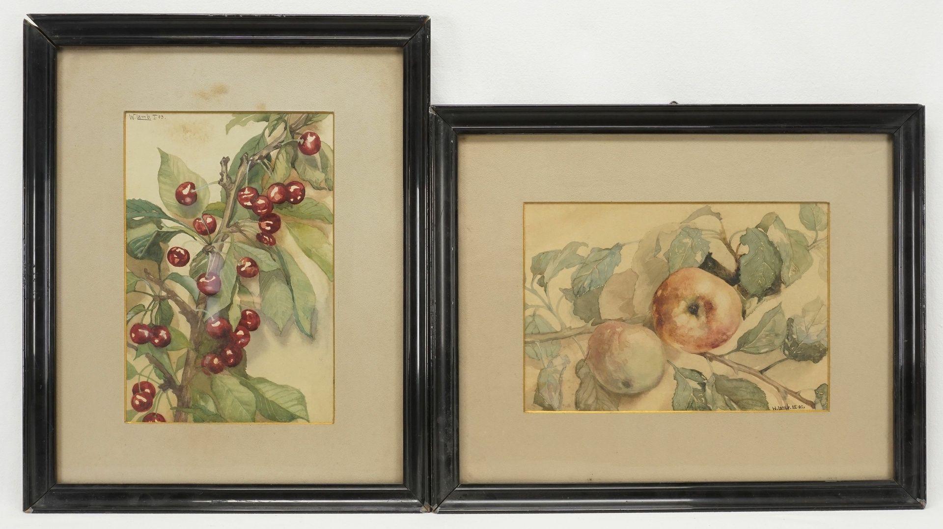W. Lamb, Kirsch- und Apfelzweig