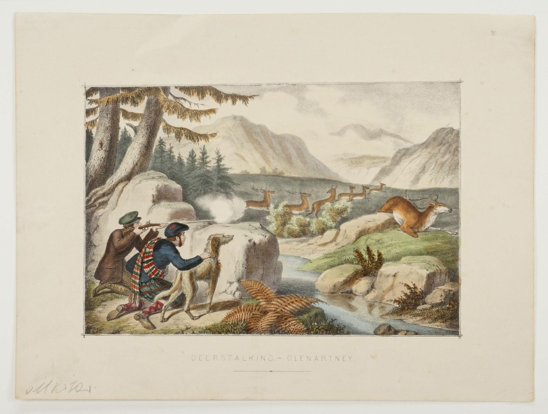Deerstalking - Glenartney - Bild 3 aus 3