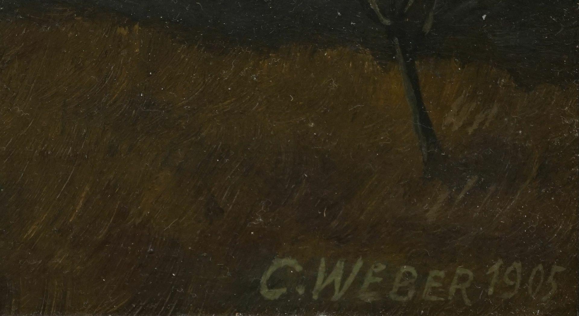"""C. Weber, """"Kaiser Wilhelm Berg bei Okahandja. Gewitterstimmung bei Abendsonne"""" - Bild 4 aus 4"""