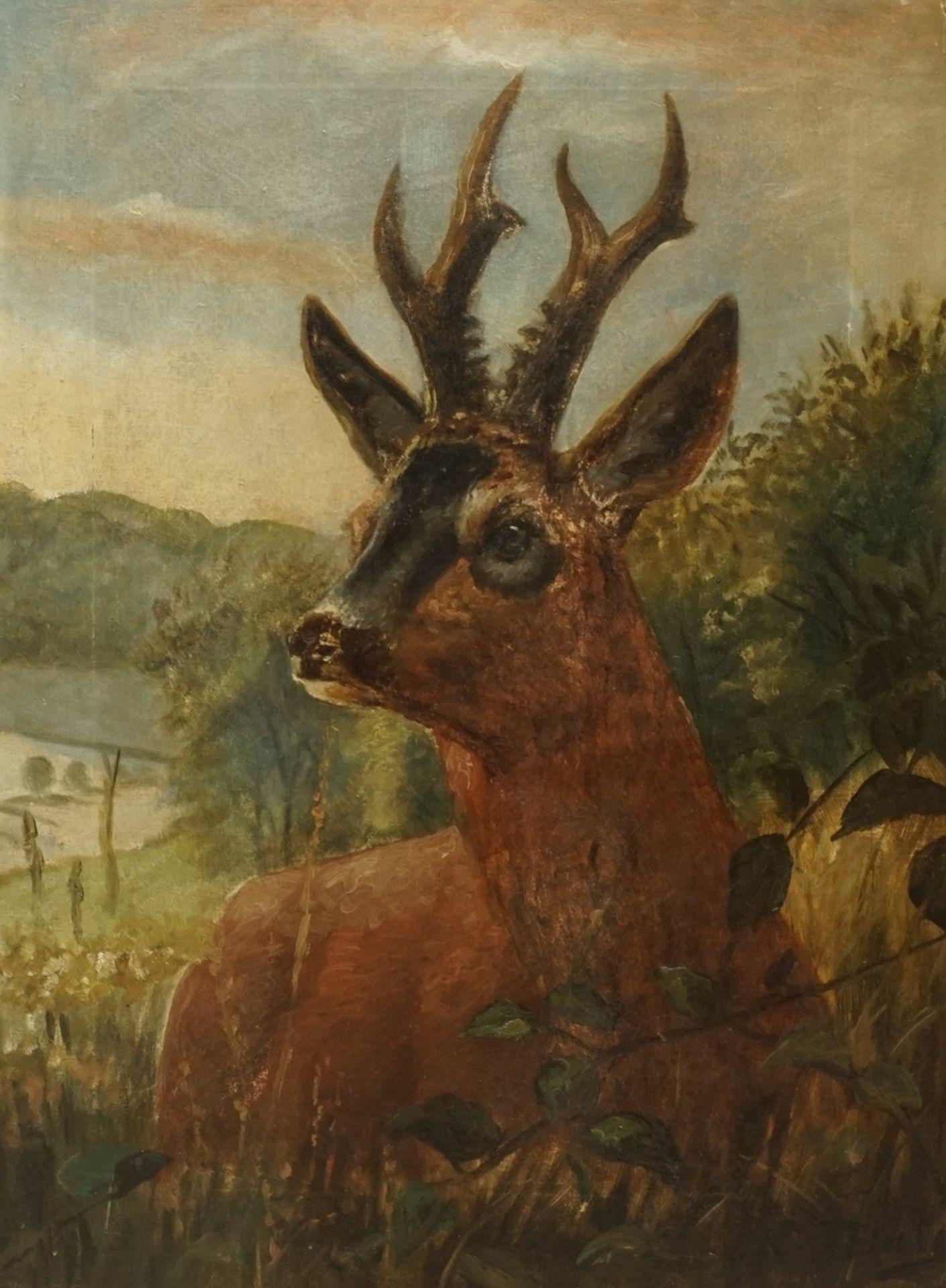 Unbekannter Künstler, Junger Rehbock