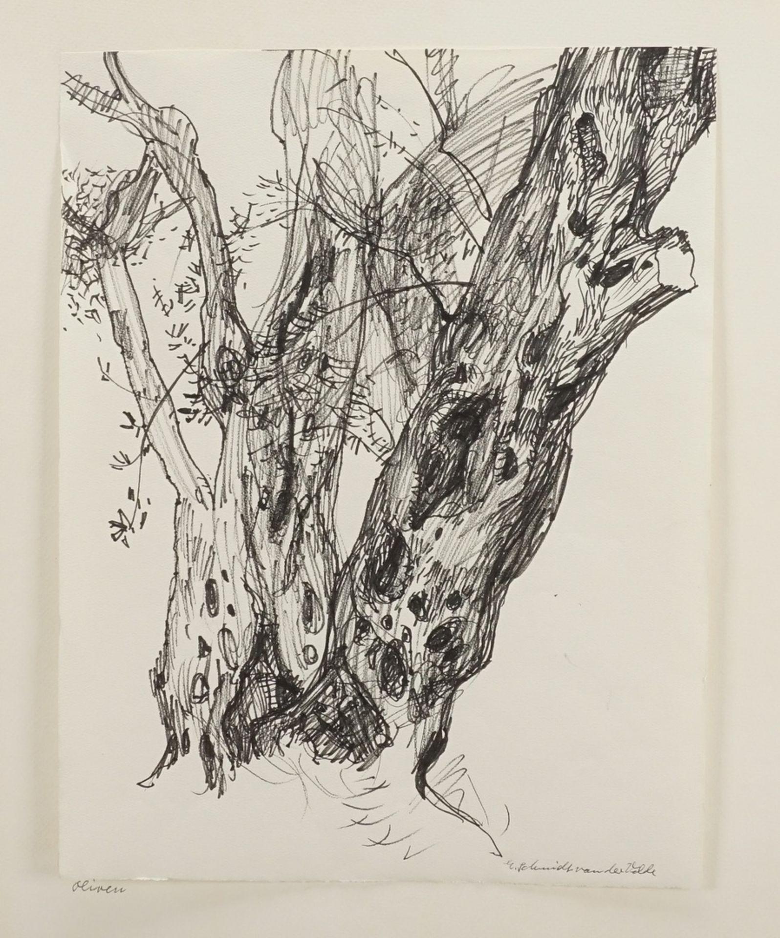"""Else Schmidt van der Velde, """"Alter Baum"""" - Bild 3 aus 4"""