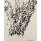 """Else Schmidt van der Velde, """"Alter Baum"""""""