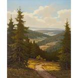 Walter Richter, Fernblick über die Hänge des Harzes