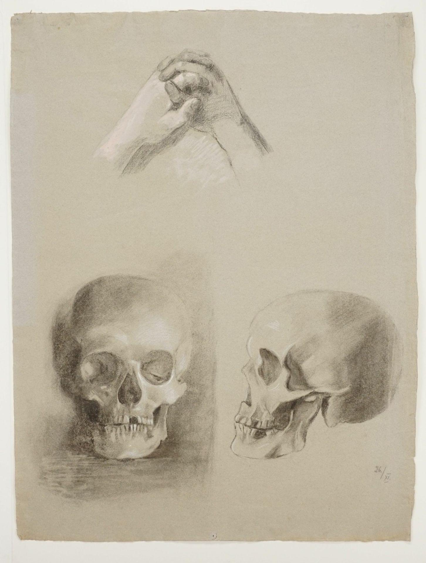 Unbekannter Künstler, Schädelstudien - Bild 2 aus 2