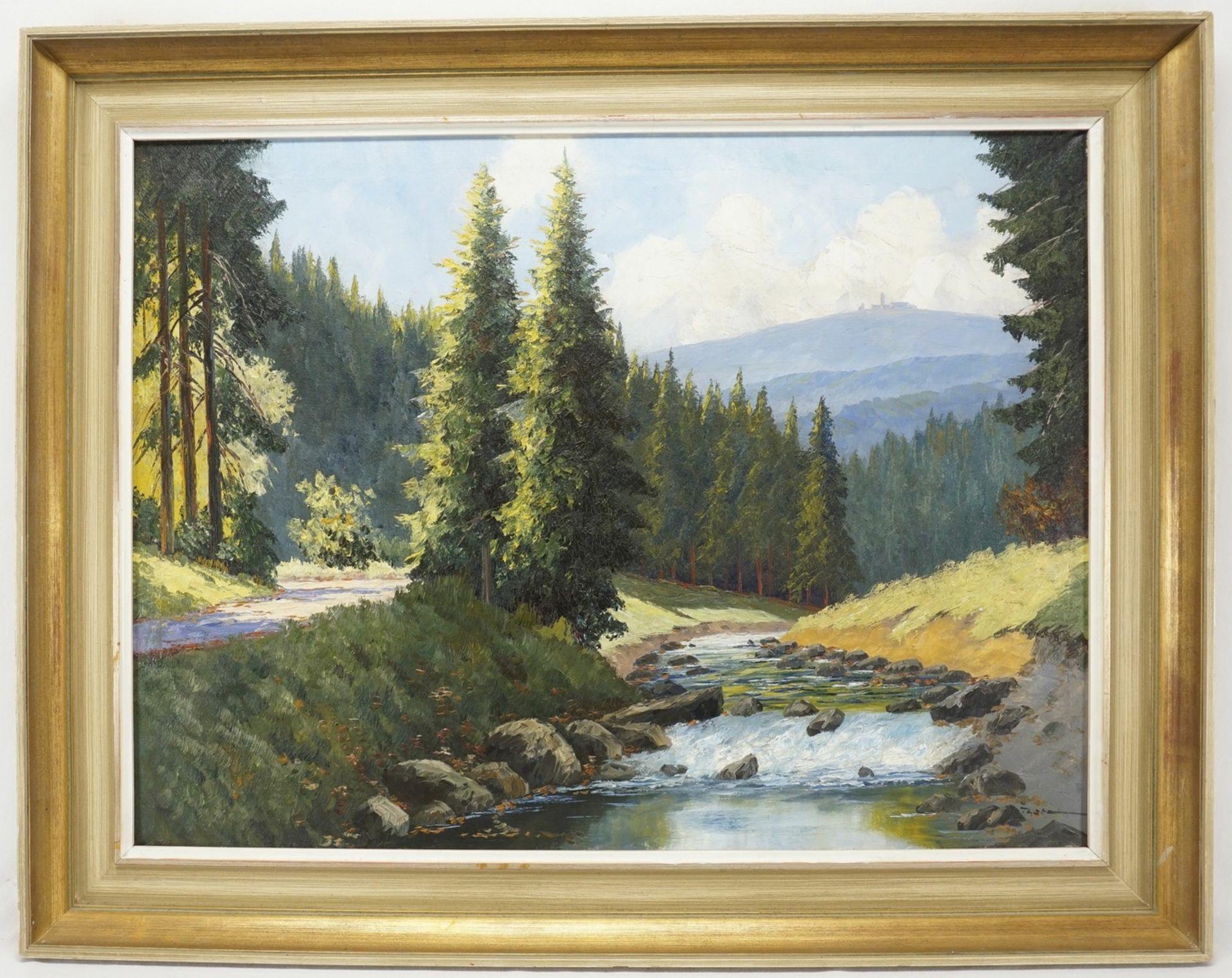 Fritz Thate, Flusslauf der Ilse mit Brockenblick - Bild 2 aus 4
