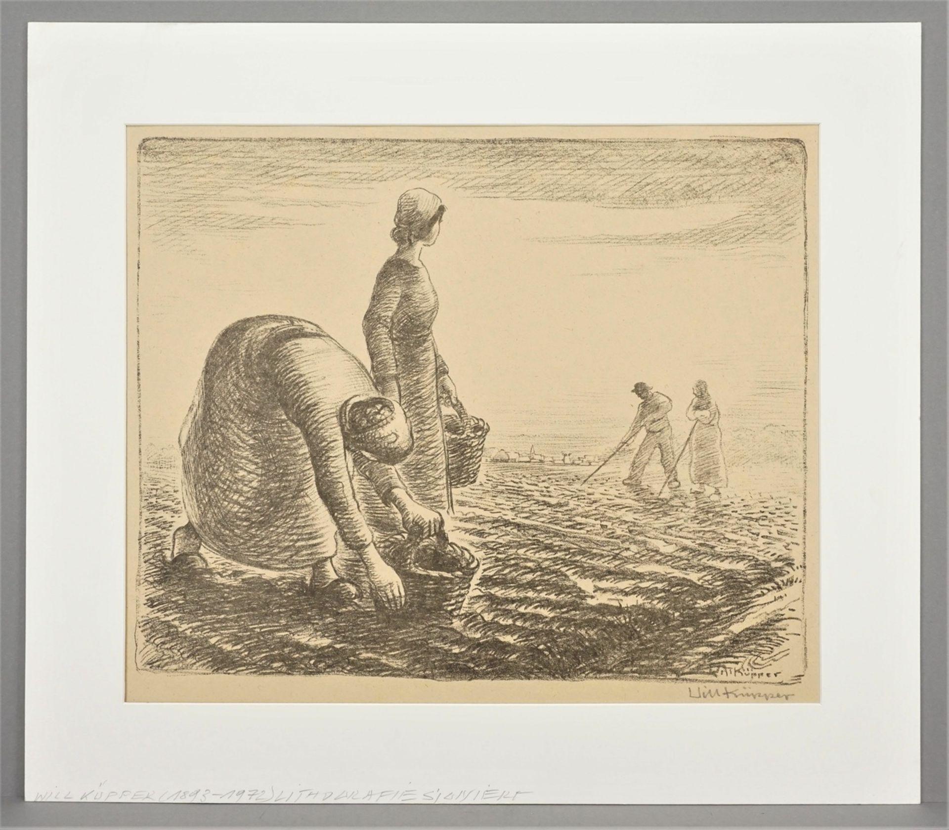 Will Küpper, Kartoffellese - Bild 2 aus 4
