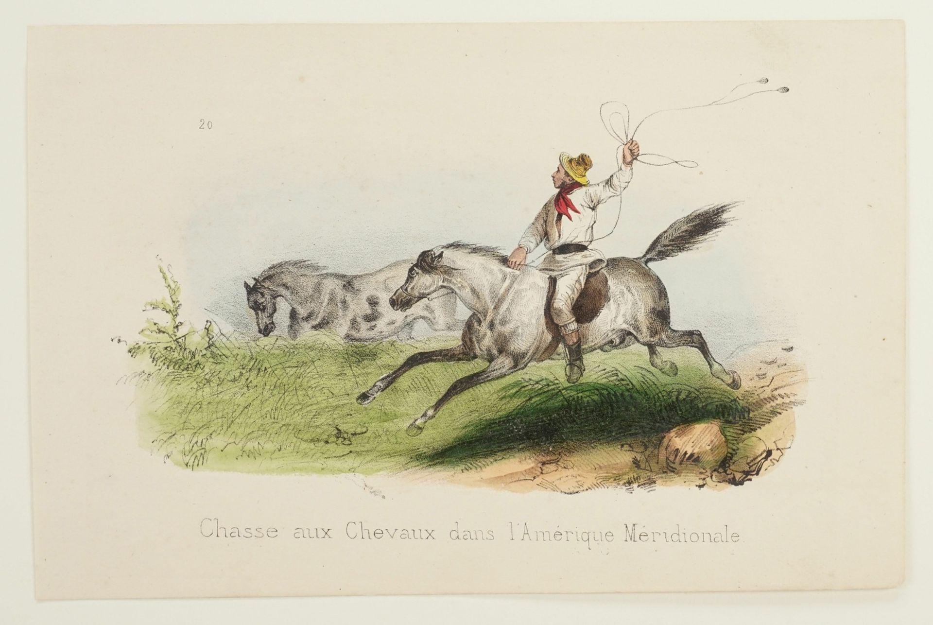 """Victor Adam, """"Chasse aux Chevaux dans l'Amérique Meridionale"""" (Pferdejagd in Mittelamerika) - Bild 3 aus 3"""