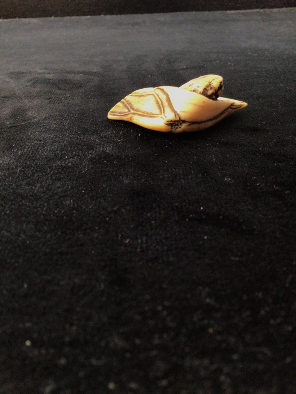A netsuke of a frog emerging from leaf with two cord holes to rear W:5cm x D:3cm - Image 3 of 4