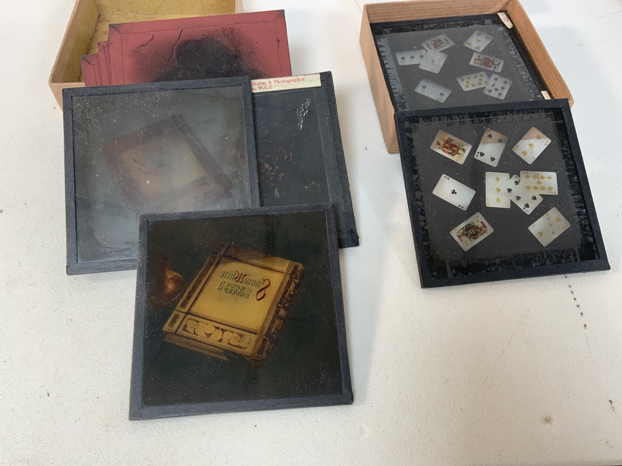 A collection of photographers glass plates including images of flowers, playing cards and - Image 4 of 4