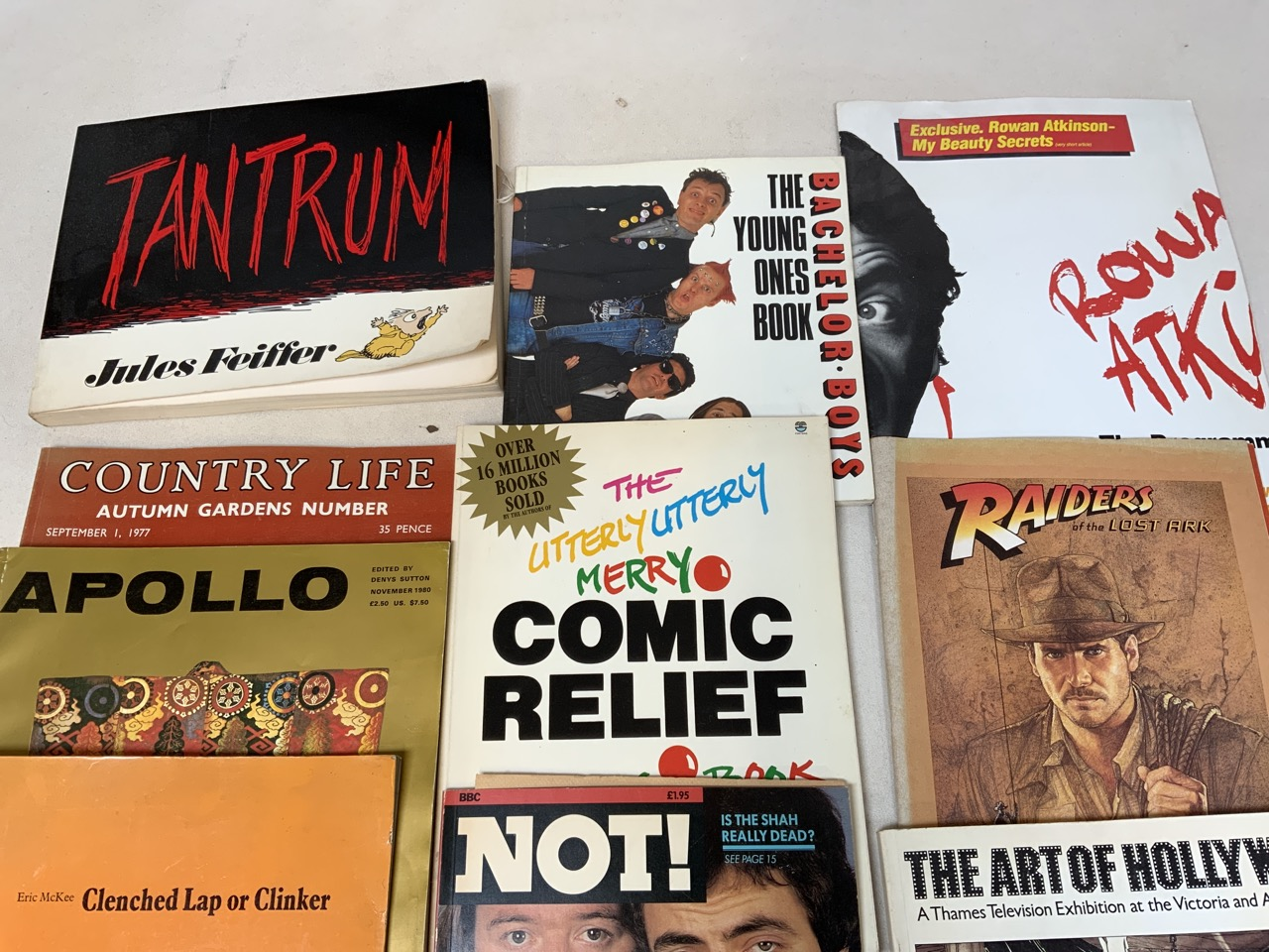 A collection of fiction and non-fictions titles to include Tantrum by Jules Feiffer, Spike - Image 2 of 3