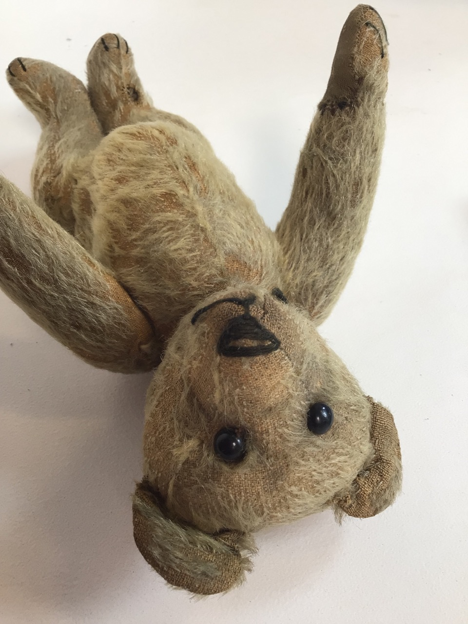 An early 1900s, assumed to be, Stieff bear with original shoe black button eyes and hump back. H: - Image 3 of 9