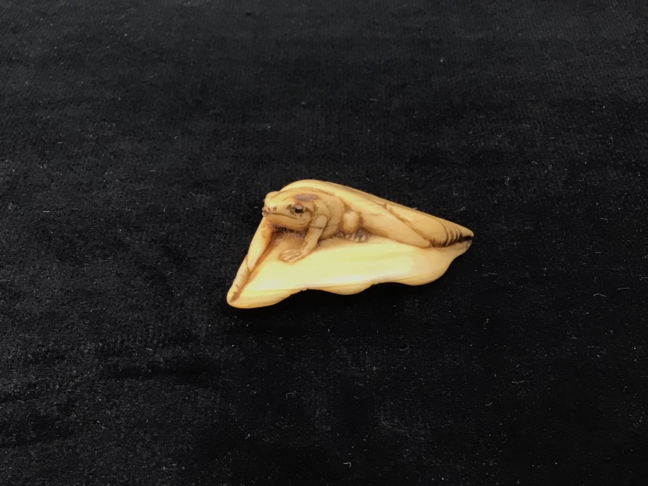 A netsuke of a frog emerging from leaf with two cord holes to rear W:5cm x D:3cm