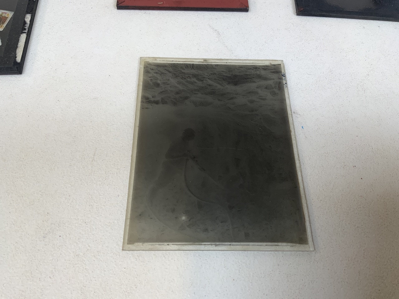 A collection of photographers glass plates including images of flowers, playing cards and - Image 2 of 4