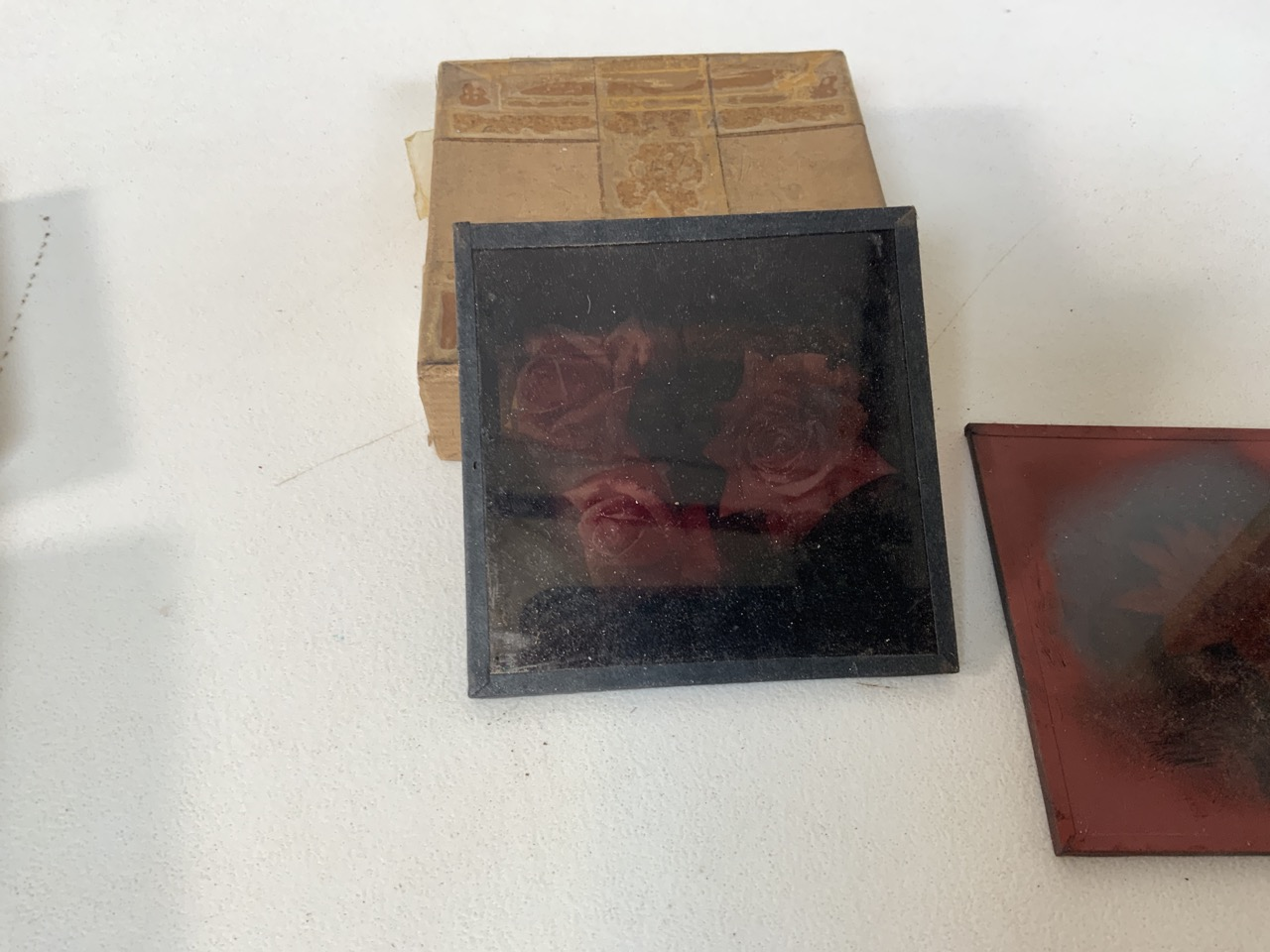 A collection of photographers glass plates including images of flowers, playing cards and - Image 3 of 4