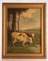 (Henri Schouten), cows in a landscape, oil on canvas, 60 x 80 cm