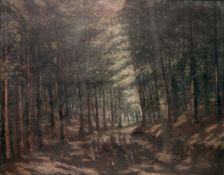 Inside a Forest by Antonín Hudeček