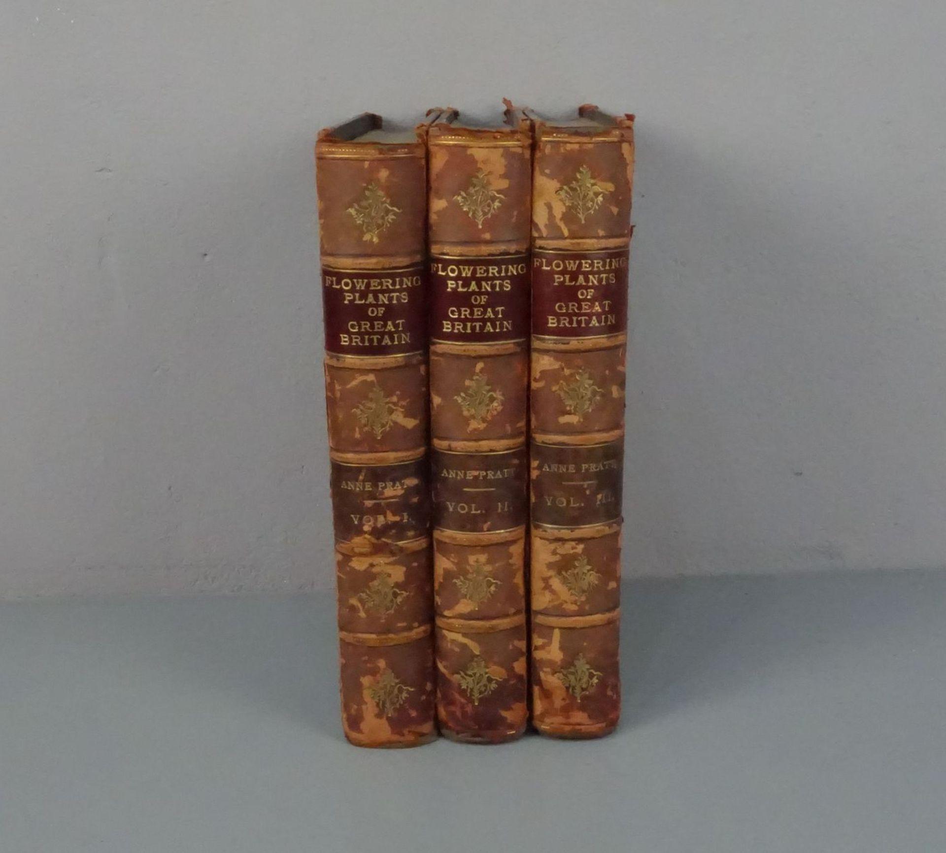 KONVOLUT BÜCHER VON 1899-1905: The Flowering Plants (Bd. 1-3) - Image 2 of 3