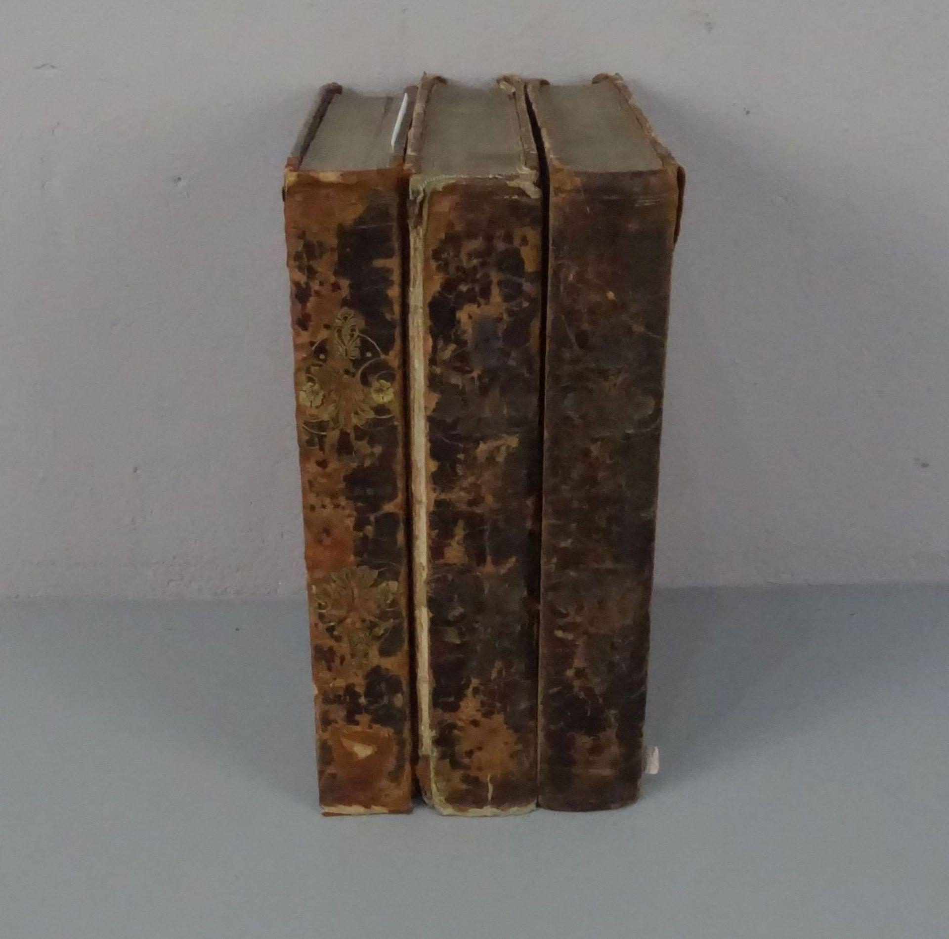 KONVOLUT BÜCHER VON 1842-1844: Der neue Plutarch (Bd. 1-3) - Image 2 of 4