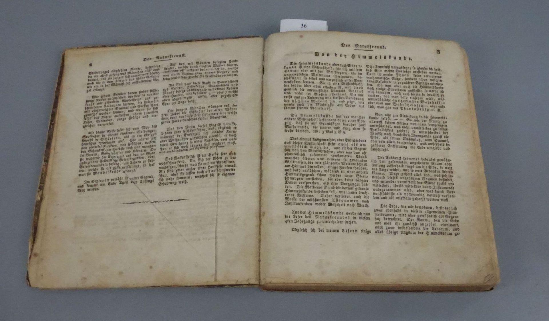 """BUCH VON 1812: """"DER NATURFREUND ODER BEITRÄGE ZUR SCHLESISCHEN NATURGESCHICHTE"""" - Image 2 of 3"""