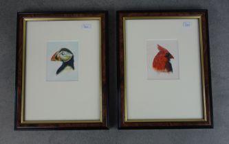 TRÜMPER, FRANZ (Gronau 1941-2021 Enschede NL), two gouaches / watercolours with bird motifs