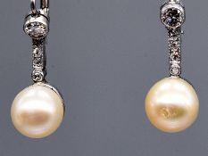 Paar Ohrgehänge mit Akoya-Perlen und 10 Altschliff-Diamanten zus. ca. 0,3 ct, Ende 20. Jh. 585