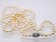 Lange Akoja-Perlenkette mit Brillanten besetztem Schloss; zus. ca. 0;18 ct; 90- er Jahre.<br><br>Hel