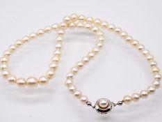 Akoja-Perlenkette; 90- er Jahre.<br><br>Akoja-Perlen; im Verlauf. Silbergraufarben mit feinem Lüster