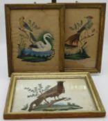 3 Vogelbilder, 19. Jahrhundert, gefertigt aus Federn, aquarelliert, 30,5 x 24,5 cm, R.