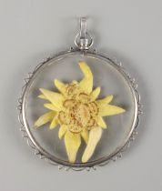 Anhänger mit echter Edelweißblüte, 835er Silber2 leicht gebauchte Glasscheiben, dazwischen E