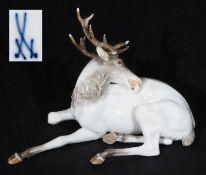 Liegender, sich putzender Hirsch. MEISSEN, Modell von Ernst August Leuteritz (zugeschrieben / attri