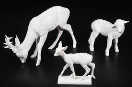 Drei  Tierfiguren, MEISSEN:   Lamm, Rehkitz und Rehbock, äsend.