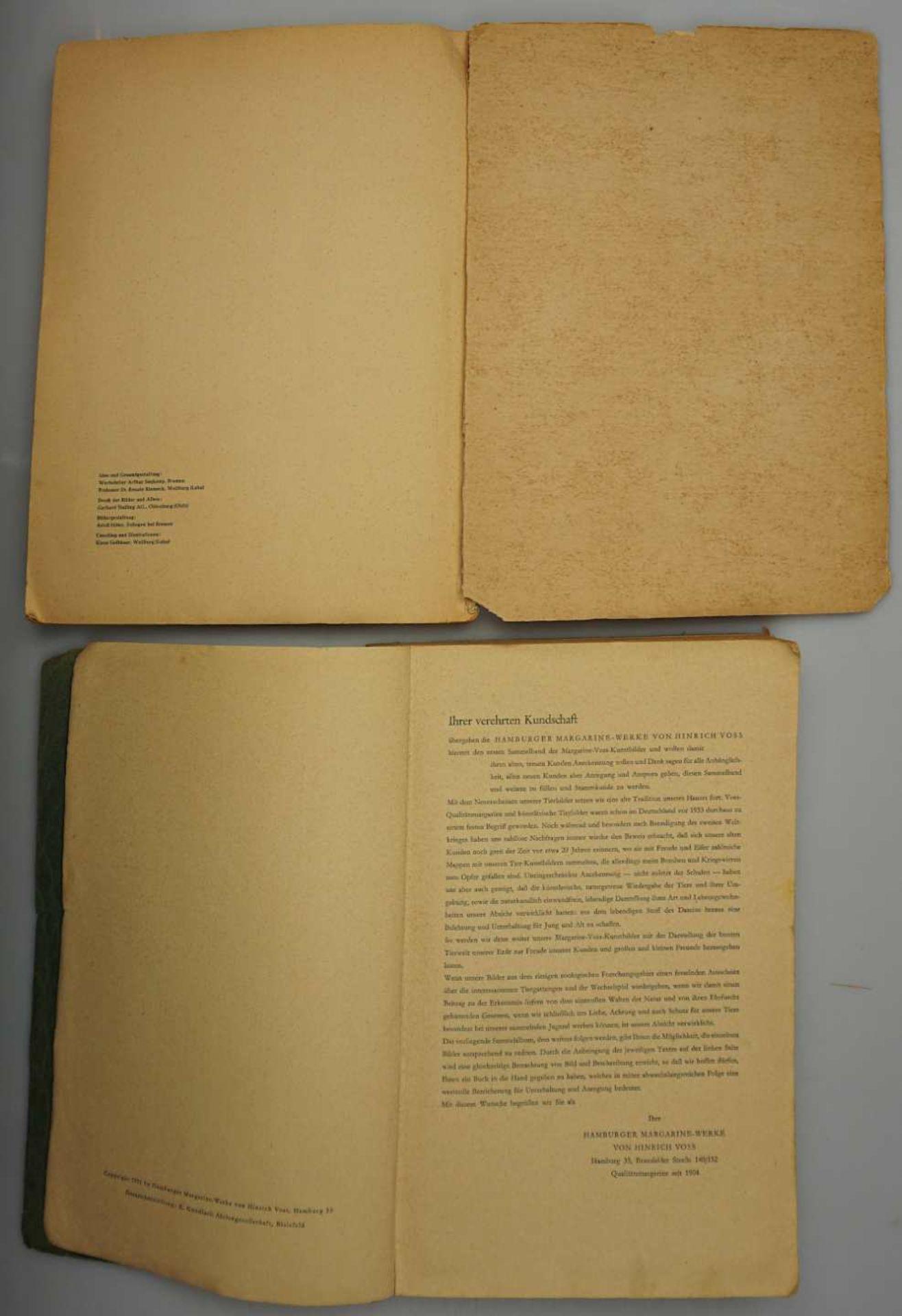 """1 Sammelbilderalbum """"Das Tierreich"""" Band I, VOSS-Kunstbilder, Bielefeld 1951 sowie 1 S - Bild 3 aus 3"""