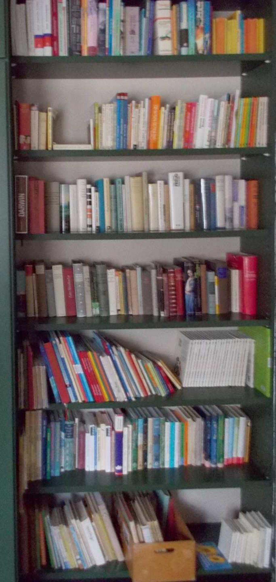 1 Bibliothek bestehend aus ca. 1000 Büchern nztl. Bildbände, Religion und Theologie, - Bild 6 aus 8