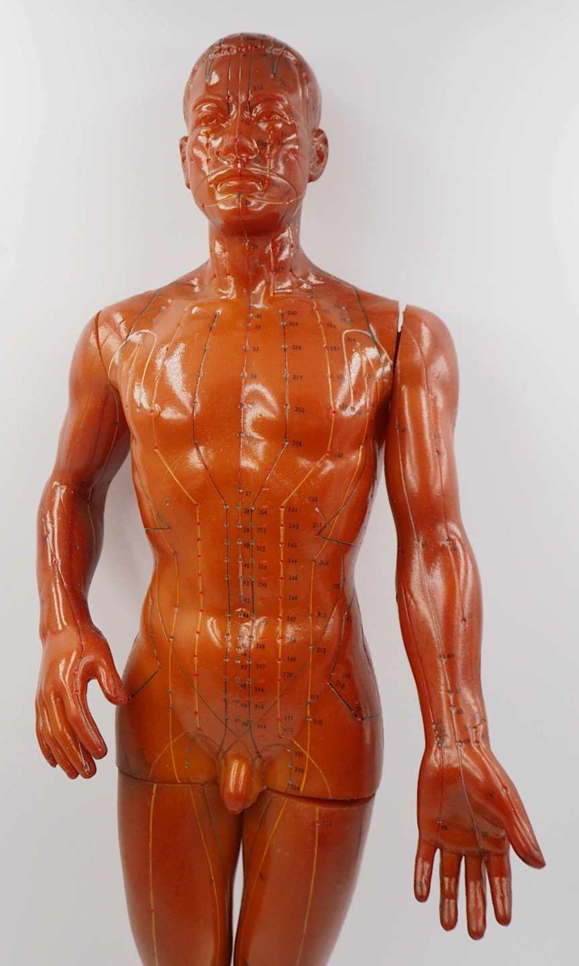 1 Akupunkturpuppe eines Mannes GOOD HEALTH BRAND, wohl Mitte 20. Jh., Japan Kunststoff - Bild 5 aus 7