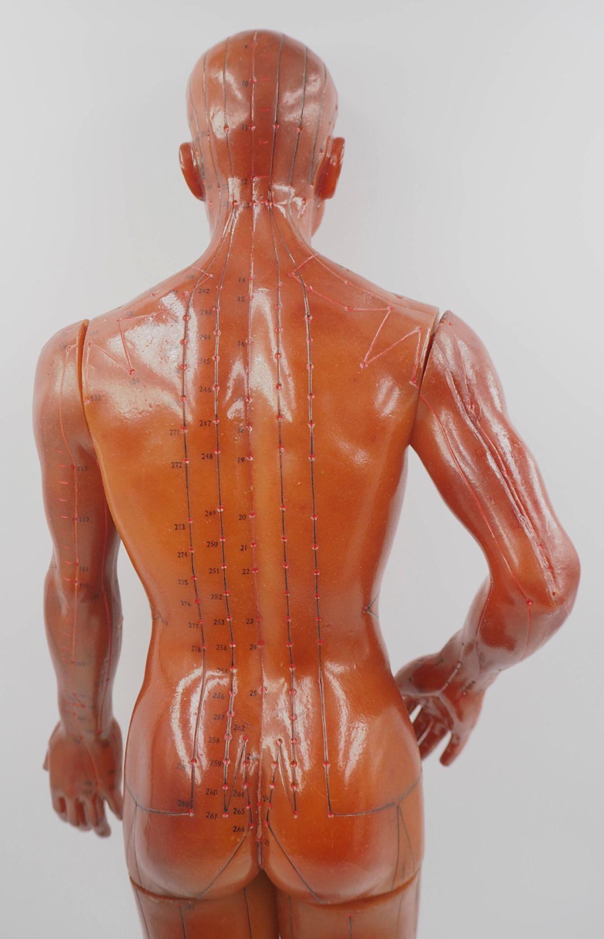 1 Akupunkturpuppe eines Mannes GOOD HEALTH BRAND, wohl Mitte 20. Jh., Japan Kunststoff - Bild 2 aus 7