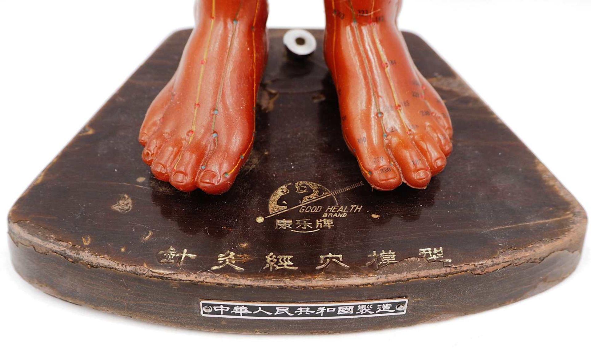 1 Akupunkturpuppe eines Mannes GOOD HEALTH BRAND, wohl Mitte 20. Jh., Japan Kunststoff - Bild 6 aus 7