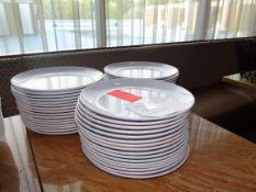 "(48) 12"" Melamine Plates"