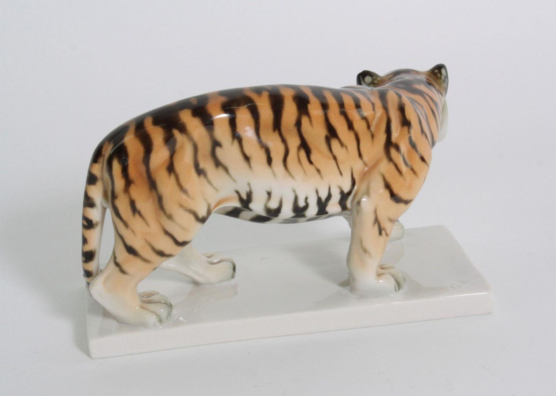 Tiger, Schwarzburger Werkstätten für Porzellankunst - Bild 2 aus 5