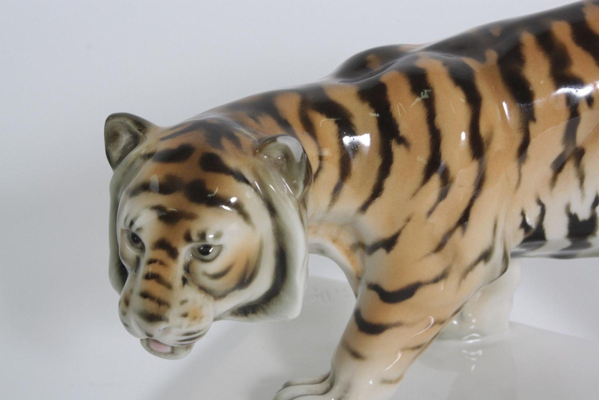 Tiger, Schwarzburger Werkstätten für Porzellankunst - Bild 4 aus 5
