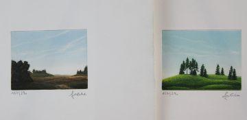 Franz Politzer ( geb. 1950 ) 2 Farbradierungen