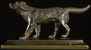 A 19th century brown patinated bronze desk weight, cast as a retreiver dog, spreading rectangular