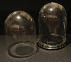 A near pair of glass display domes, each approx. 28cm high x 21cm diameter; a circular hardwood