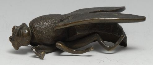 A 19th century desk bronze, of an oversize house fly, 11.5cm long