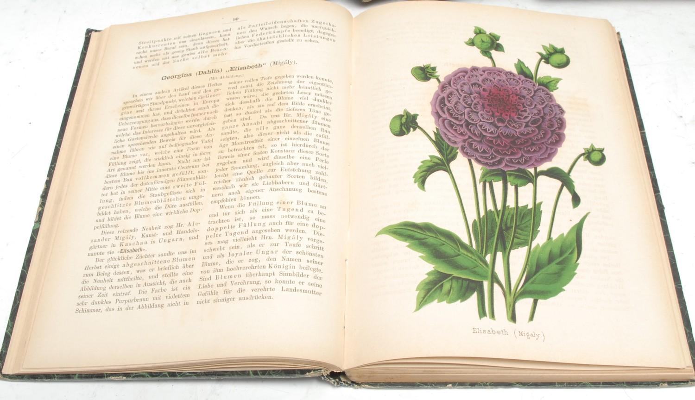 Botany - Neubert (Wilhelm), seven volumes of the Deutsches Magazin: 1853, 1871, 1874, 1875, 1876,