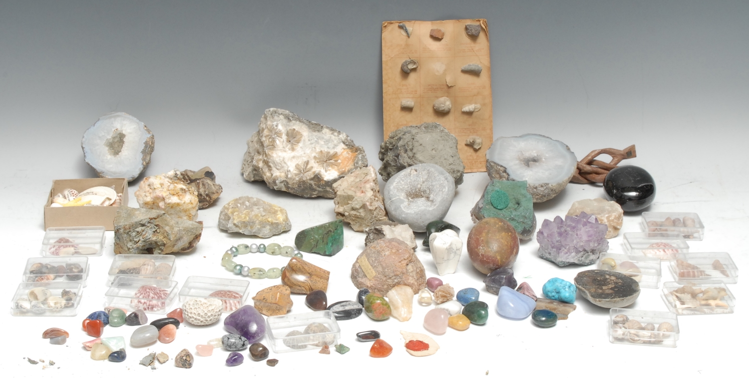 Natural History - Geology, a collection of geological specimens including amethyst, pyrite,