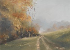 Mary Wastie (bn. 1935) A Cornish Lane in Autumn signed, oil on canvas, 30cm x 40cm; another, Misty